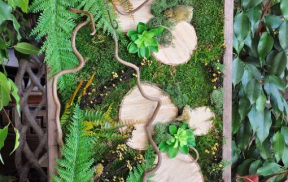 Спилы деревьев на фоне мха и папоротников