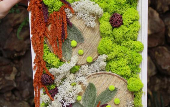 ягель, амарант, чистец и спилы деревьев. Полностью натуральные материалы!