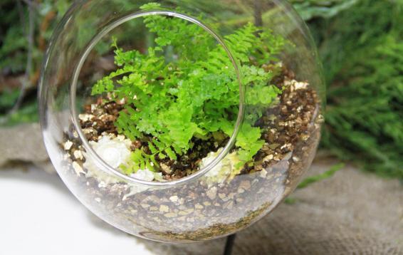 Легкий подвесной флорариум на изящной подставке.